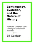 Contingency, Evolution, and the Nature of History
